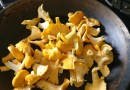 Chanterelle Mushrooms and Everything You Need to Know About Them