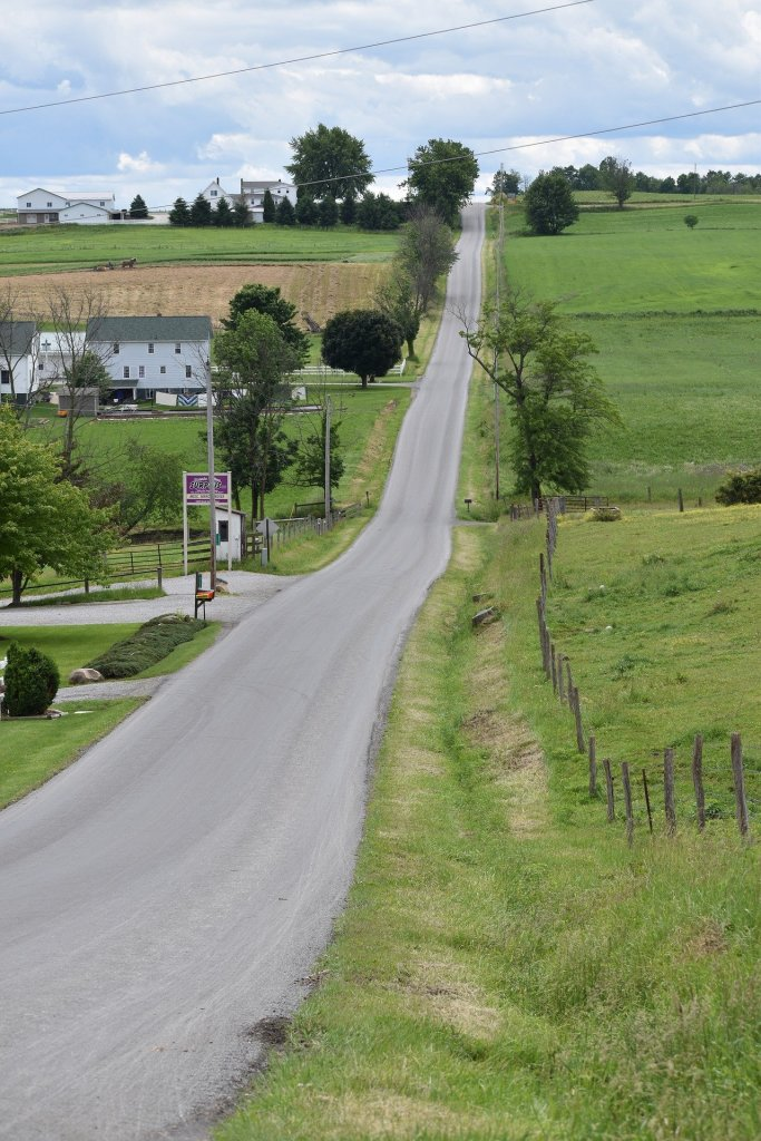 Flat Fee realtor gives maximum commission rebate buy homes