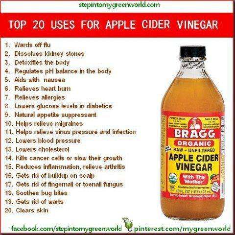 Apple Cider Vinegar: No Home Should Be Without It! – Self ...