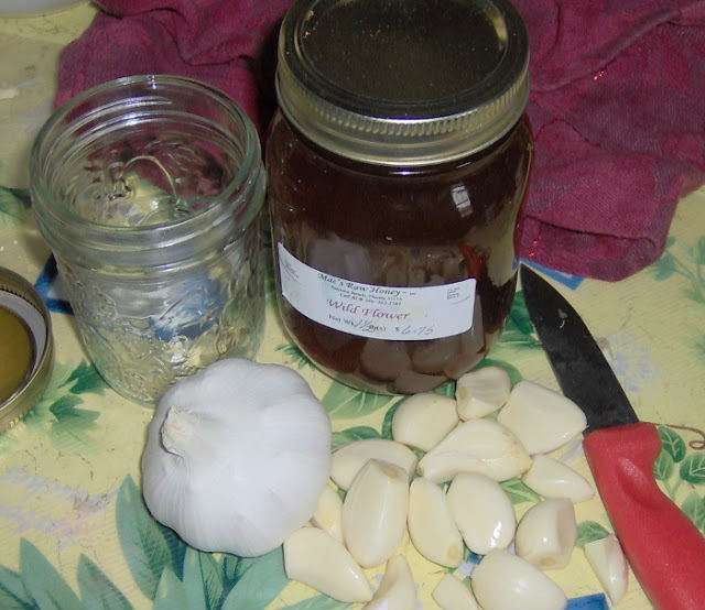 garlic honey