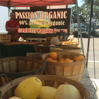 Strawberry Passion Farms WAP
