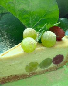 Probiotic Cashew Pie P