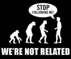 Evolution in School