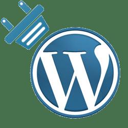 How to delete plugin in WordPress