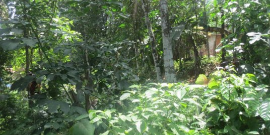 Land for sale at Pathanamthitta Dist.