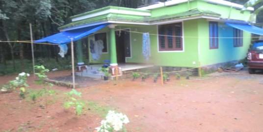Land and house for sale at Thrissur Dist.