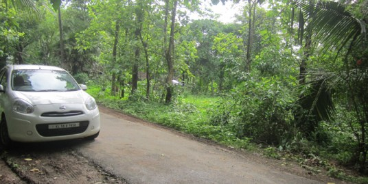 Land for sale at Thrissur Dist.