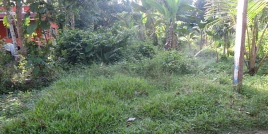 Land for sale Near Cheriyanad