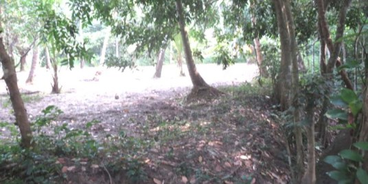 Land for sale at Guruvayur