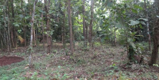 Land for sale at Wadakanchery