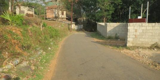 Rubber estate for sale at Kottayam