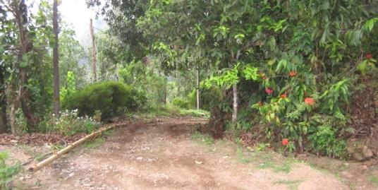 Land for sale at Idukki Dist.