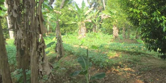 LAND FOR SALE AT CHALAKUDY, THRISSUR