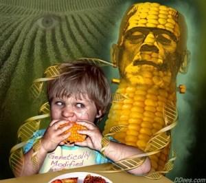 Monsanto's GM Corn Suspended In Russia