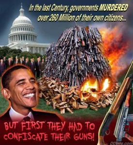 gun confiscation