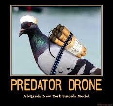 America's Enemies Now Using Carrier Pigeons