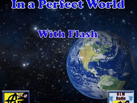 In a Perfect World Cover Banner