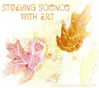 studying science with art