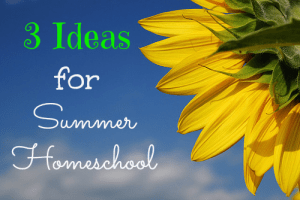 summerhomeschool