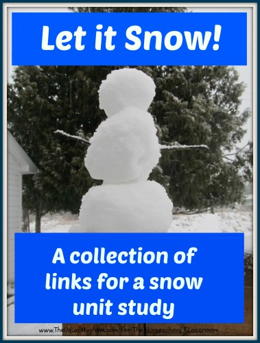 snow unit study pinterest image