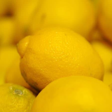 Super Yummy and Quick Lemon Pie