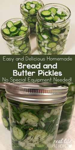 Easy and Delicious Bread and Butter Pickles Recipe (no special equipment needed!) | Real Life at Home