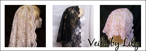 Veils by Lily