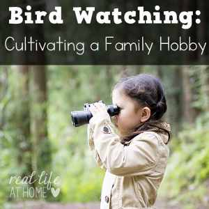 Bird watching and identification is an ideal family hobby that everyone can enjoy. Here are a few tips for developing the birding habit in your own family.