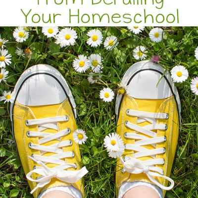 Has spring fever struck at your house? Here are some tips for keeping spring fever from derailing your homeschool with practical ideas everyone can enjoy.