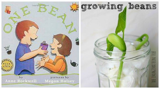 gardening books for kids growing beans
