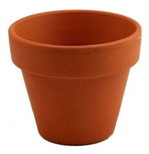 "Set of 5 - 6"" Clay Pots - Great for Plants and Crafts"