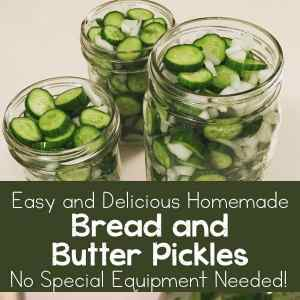 Easy and Delicious Homemade Bread and Butter Pickles