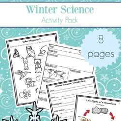 Free printable eight page winter science worksheets packet which includes many items needed for some winter science activities such as printables about animal hibernation and migration, animal mini report recording sheet, winter nature report, winter vocabulary definitions page, snowflake lifecycle page, and more | Real Life at Home #WinterScience #WinterWorksheets #ElementaryScience