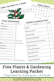 Free Plants and Gardening Learning Packet for Kindergarten - 2nd Grade