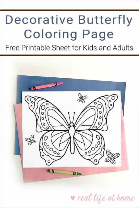 Looking for a fun coloring page for Spring and Summer? Here is a free printable Butterfly Coloring Page that is great for kids of all ages (and adults too)!