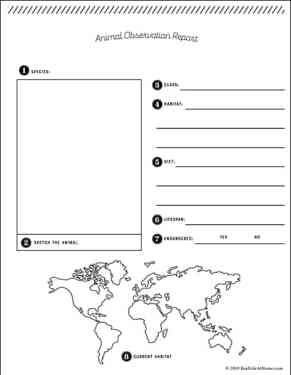 Free Printable Animal Report Template from Real Life at Home