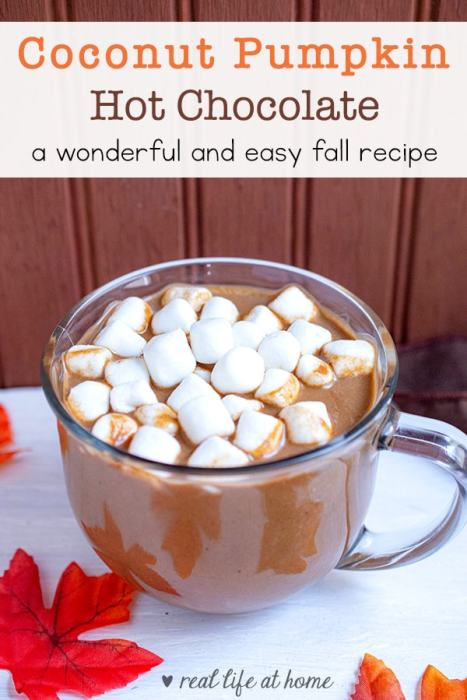 Enjoy the taste of fall and a dairy-free hot chocolate option when you make this quick and easy homemade coconut pumpkin hot chocolate recipe.