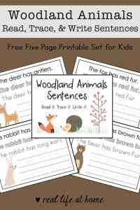 This woodland animals read, trace, and write copywork packet is a great way to work on reading and writing for kids. The packet is 7 pages and perfect for preschool - 2nd grade.