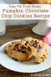Pumpkin Chocolate Chip Cookies with Pecans Recipe