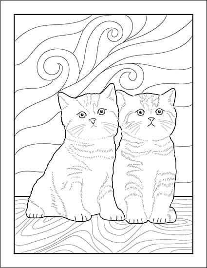 Cat Coloring Sheets