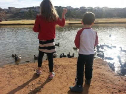 feeding the ducks 1