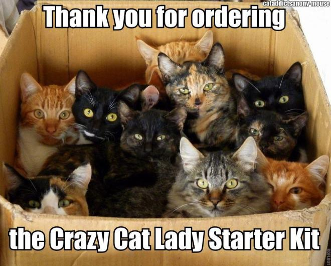 Crazy Cat Lady Starter Kit