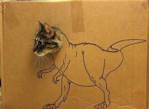 dino-cat