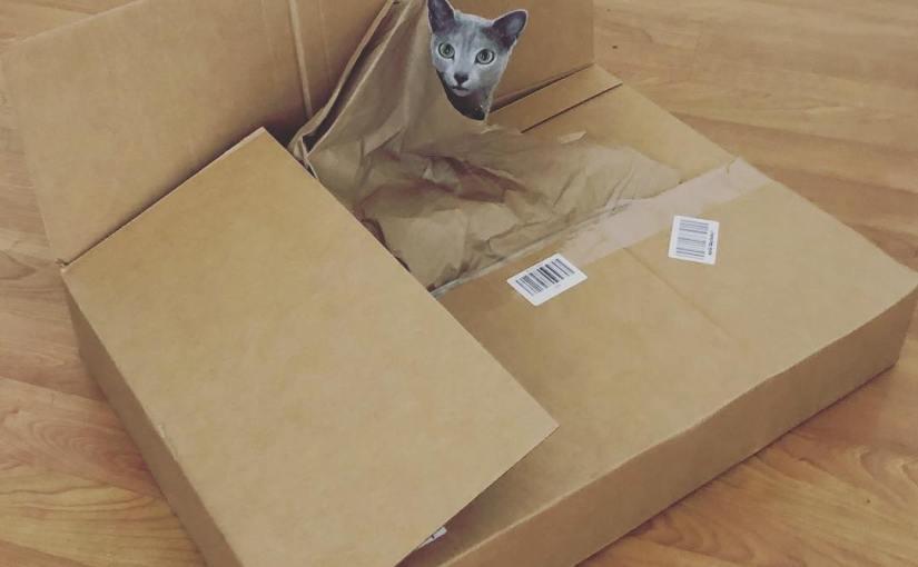 dis box for me??