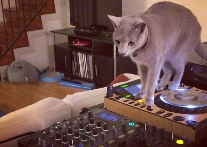 Turn up with DJ Boris
