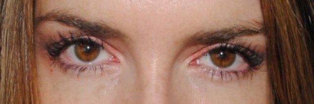 The London Lash Queen Root Lift and Colour Boost