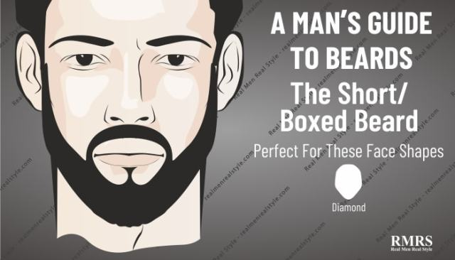 short beard infographic