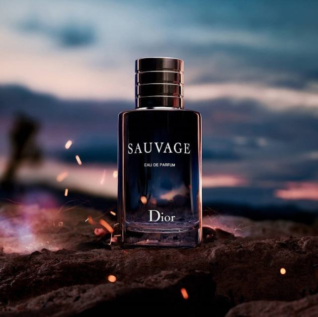 Dior Dauvage Mens Fragrance
