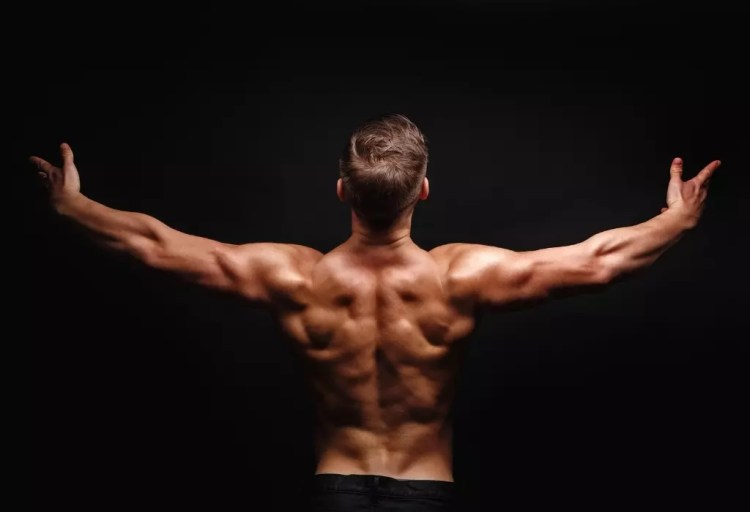 common male insecurities - your muscles aren't big enough