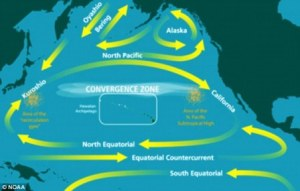 Ocean Currents in the Pacific